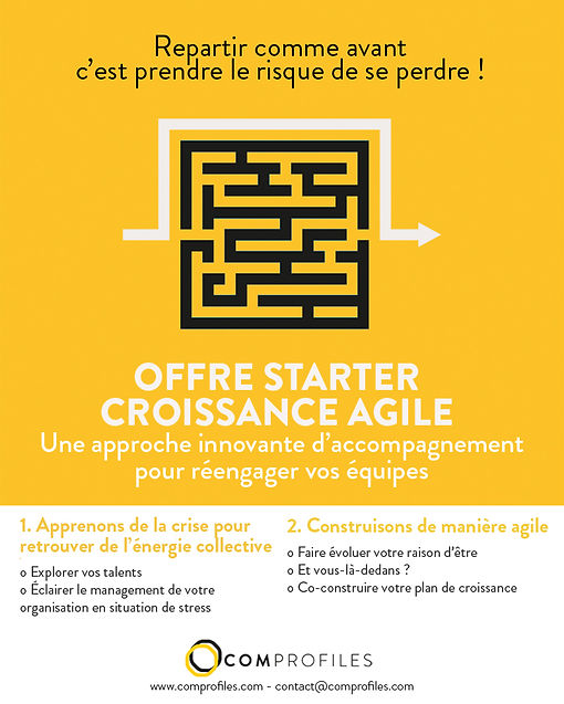 Maquette_Labyrinthe_StarterCroissance_DE