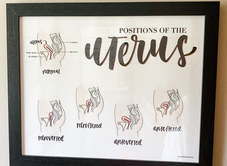 Uterus positions and what that means