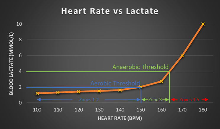 A graph showing blood lactate levels against aerobic and anaerobic heart rate thresholds