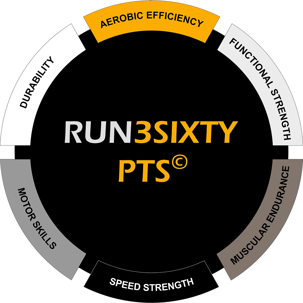 Graphic illustrating RUN3SIXTY's personal training system