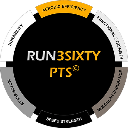 Diagram of RUN3SIXTY's Personal Training System designed specifcally for runners