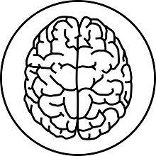 Ochorenia mozgu.jpg