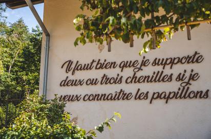 Se ressourcer au Grand Petit Prince