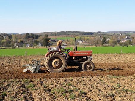 Fraisage avant plantation des courges