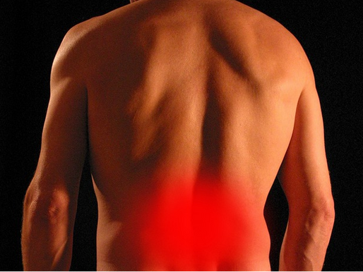 Should I See a Chiropractor or a Medical Doctor for my Back Pain?