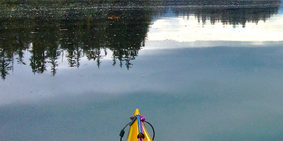 5-Day The Nature of Self-Compassion: MSC + Kayaking Alaska
