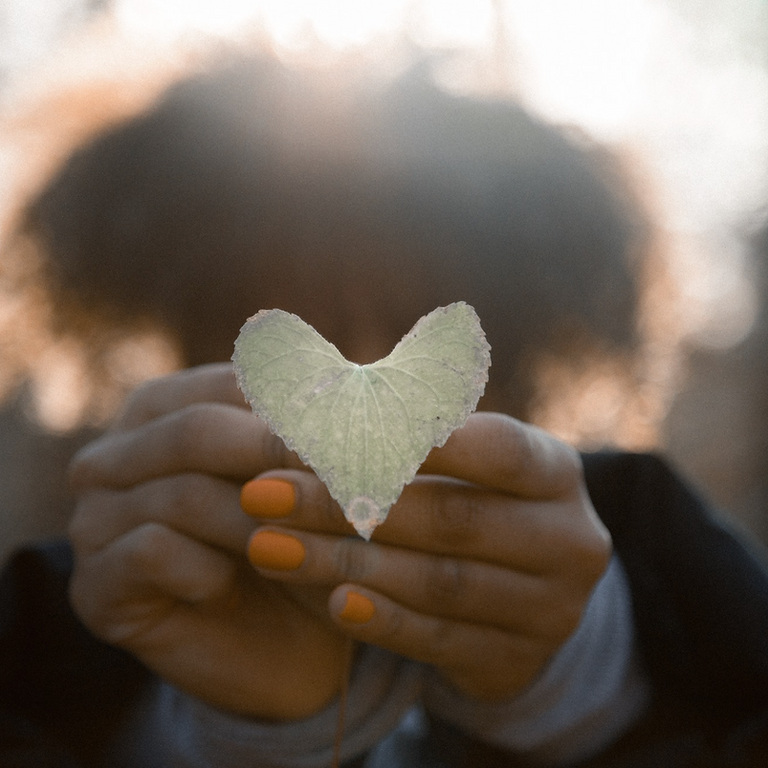 6-Week Short Course in Mindful Self-Compassion