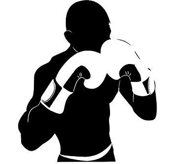 Boxer 1.jpg