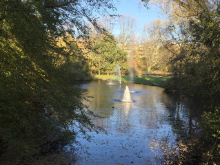 Autumn in Amsterdam Vondelpark