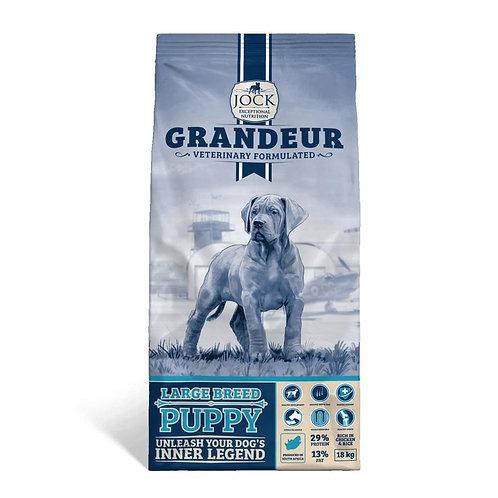 Jock Grandeur Large Breed Puppy