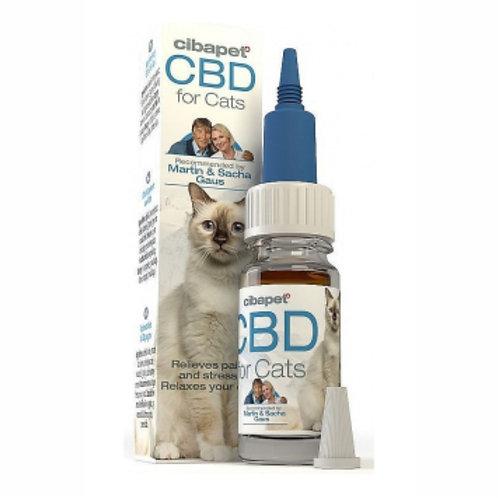 CBD Fish Oil for Cats