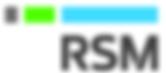 rsm logo paint.png