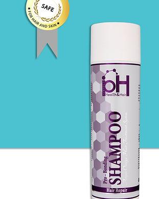 shampoo_311X388PX (1).jpg