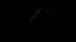 persimmoncreekbarn logo mock 011.png