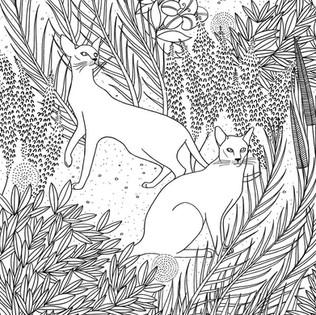 PICTURA CATS COLOURING BOOK