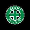 VIlella Assessoria SESMT Serviço Especializado em Engenharia de Segurança e Medicina do Trabalho