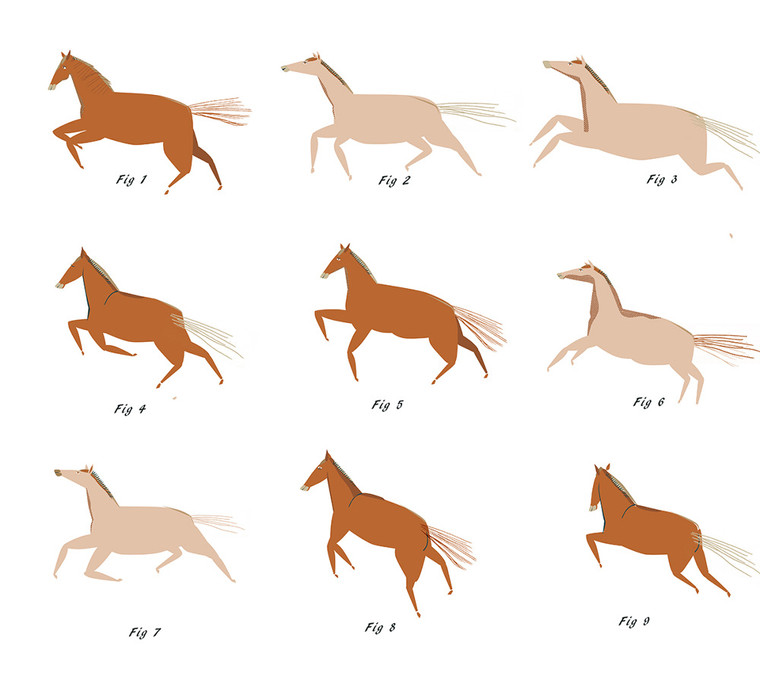 brown-horses-copy_1000.jpg