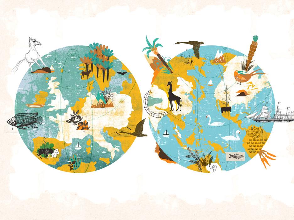 planet earth illustration copy.jpg