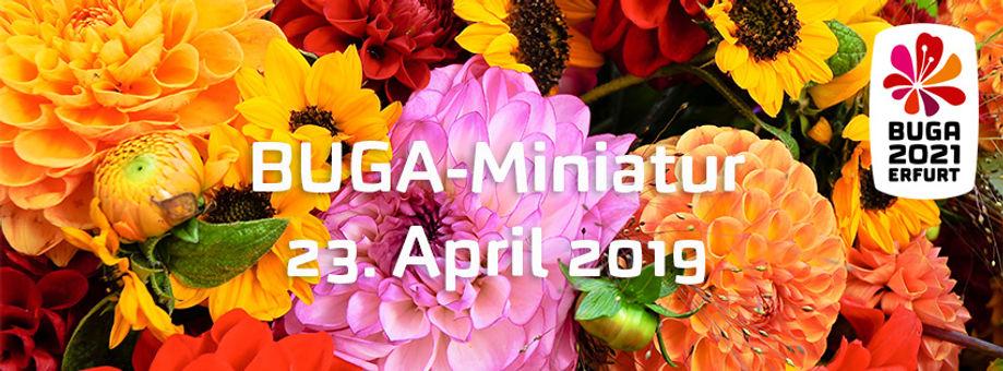 20190415_FB_BUGA-Miniatur.jpg