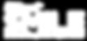 SVS_logo_03-01.png