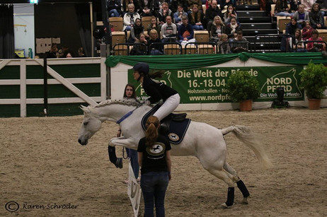 Pferdemesse Nordpferd 2019