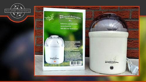 Biota Bacterial Activator XL (Kocher)