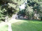 chenil 4.jpg