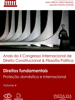 Direitos fundamentais: proteção doméstica e internacional
