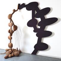 Frans Krajcberg, boules de palétuvier (série ombre portée)