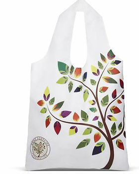 annefontaine-ecobag.jpg
