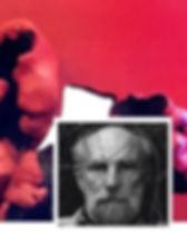 frans-krajcberg.jpg