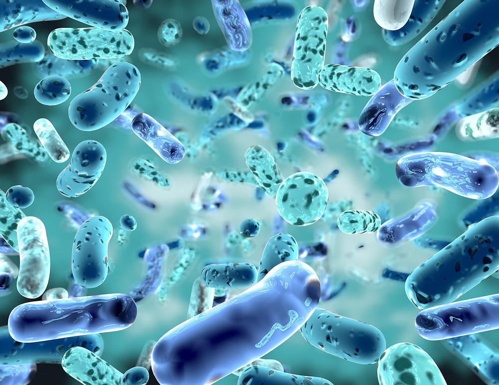 gut health, gut microbiata, immune system, depression, anxiety