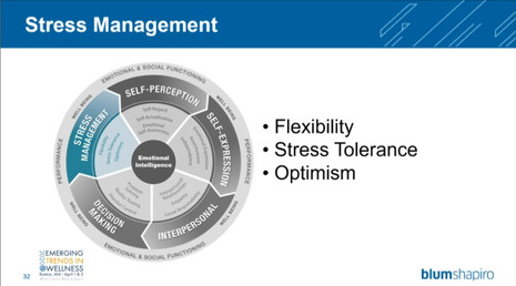 Stress management WW conference 2020