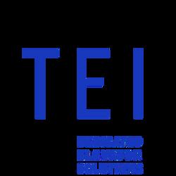 TEI Elevator