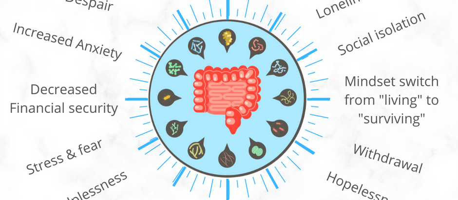 Improve Your Mood and Anxiety With Food -The Gut Brain Connection