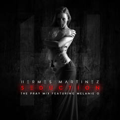 seduction remix cover