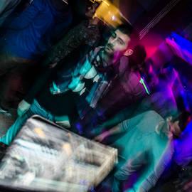 athene noctua showcase