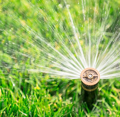 green-team-irrigation.jpg
