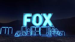 FOX_IDs (0-00-14-12)