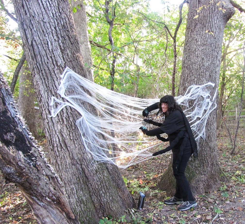 Spider - Haunted Trail