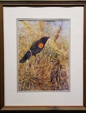 avian6.jpg