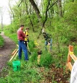 Chipmunk Woods split rail fence