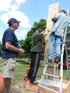 Chimney swift construction