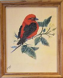 avian50.jpg
