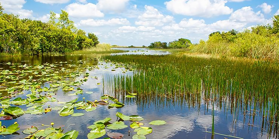 Get To Know Your Town Meeting with the Inland Wetlands Board