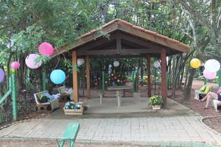 Festa de aniversário com piquenique no parque