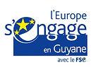 Logo - FSE Guyane .jpg
