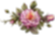 jag_rosepinkarrangement.png