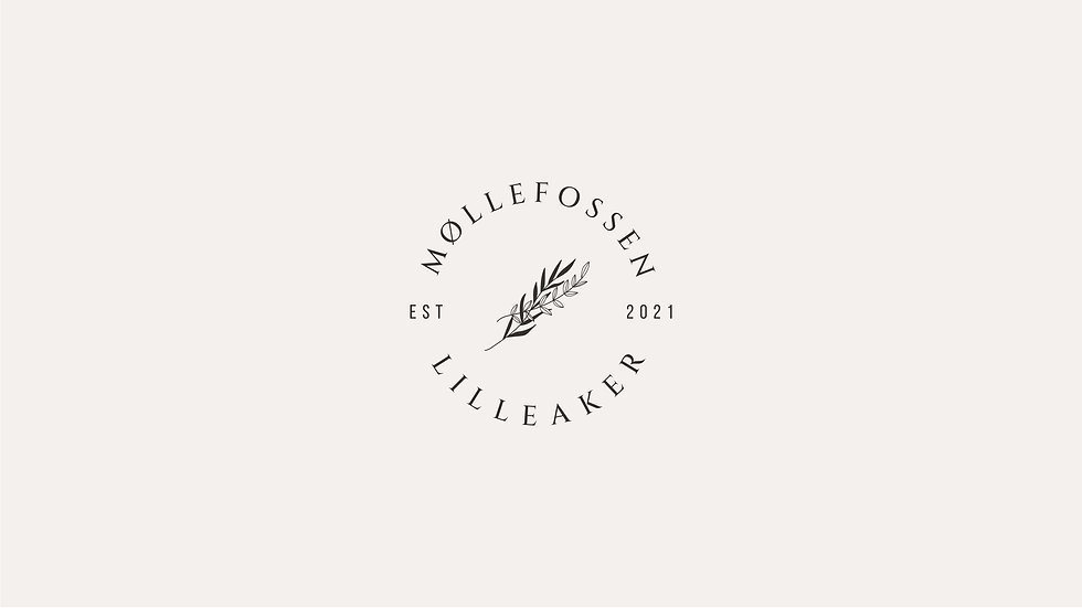 Møllefossen-01.jpg