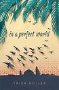 inaperfectworld.jpg